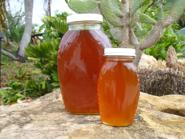 Raw natural wildflower honey